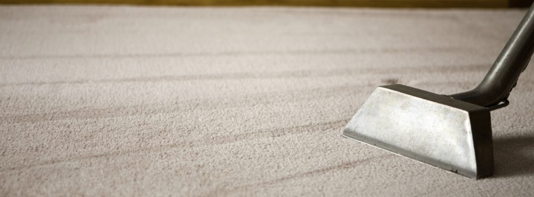 Don't replace your carpets – clean them!
